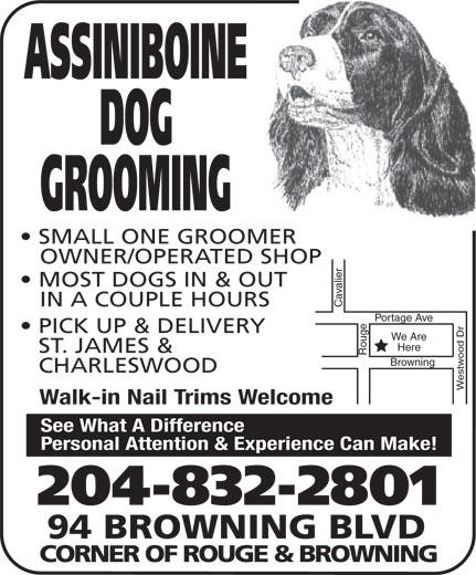 Assiniboine Dog Grooming (204-832-2801) - Display Ad -