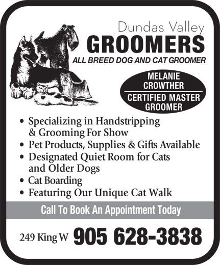 Dundas Valley Groomers (905-628-3838) - Display Ad - ALL BREED DOG AND CAT GROOMER MELANIE CROWTHER CERTIFIED MASTER GROOMER Specializing in Handstripping & Grooming For Show Pet Products, Supplies & Gifts Available Designated Quiet Room for Cats and Older Dogs Cat Boarding Featuring Our Unique Cat Walk Call To Book An Appointment Today 249 King W 905 628-3838