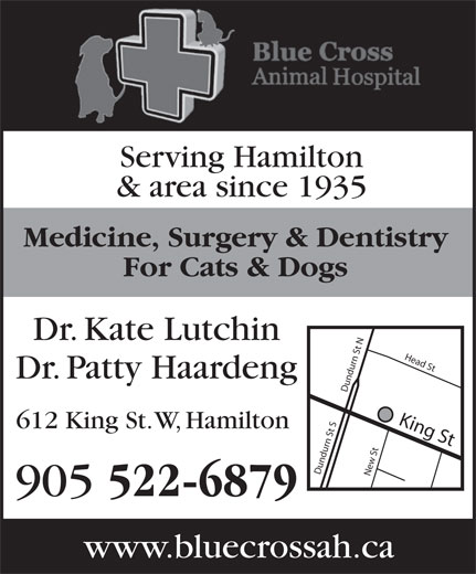 Blue Cross Animal Hospital (905-522-6879) - Display Ad - Dr. Kate Lutchin Dr. Patty Haardeng 522-6879 www.bluecrossah.ca King St Dundurn St SDundurn St NNew St Head S 612 King St. W, Hamilton 905 Medicine, Surgery & Dentistry & area since 1935 For Cats & Dogs Serving Hamilton