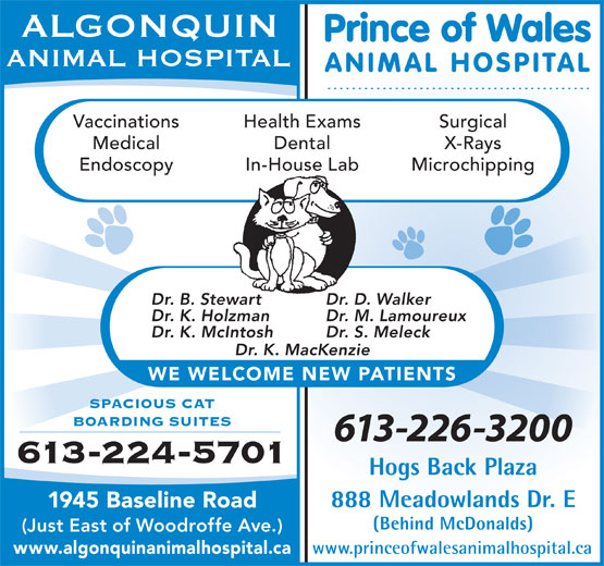 Algonquin Animal Hospital (613-224-5701) - Annonce illustrée======= -