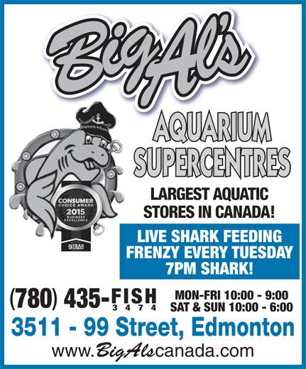 Big Al's Aquarium Supercentres (780-435-3474) - Annonce illustrée======= - 3474 SAT & SUN 10:00 - 6:00 3511 - 99 Street, Edmonton www. BigAls canada.com 435- AQUARIUM SUPERCENTRES LARGEST AQUATIC STORES IN CANADA! LIVE SHARK FEEDING FRENZY EVERY TUESDAY 7PM SHARK! MON-FRI 10:00 - 9:00 FISH 780 3474 SAT & SUN 10:00 - 6:00 3511 - 99 Street, Edmonton www. BigAls canada.com 435- AQUARIUM SUPERCENTRES LARGEST AQUATIC STORES IN CANADA! LIVE SHARK FEEDING FRENZY EVERY TUESDAY 7PM SHARK! MON-FRI 10:00 - 9:00 FISH 780