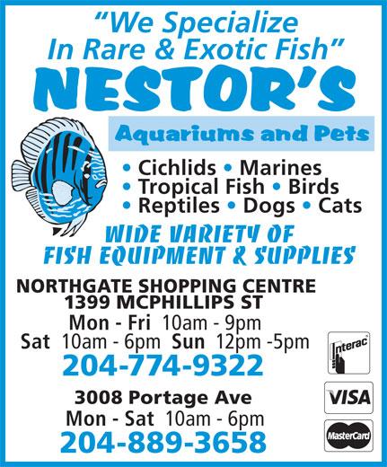 Nestor's Aquariums & Pets (204-774-9322) - Annonce illustrée======= - WIDE VARIETY OF FISH EQUIPMENT & SUPPLIES NORTHGATE SHOPPING CENTRE 1399 MCPHILLIPS ST Mon - Fri 10am - 9pm Sat 10am - 6pm Sun 12pm -5pm NORTHGATE SHOPPING CENTRE 1399 MCPHILLIPS ST Mon - Fri 10am - 9pm Sat 10am - 6pm Sun 12pm -5pm 204-774-9322 3008 Portage Ave Mon - Sat 10am - 6pm 204-889-3658 We Specialize In Rare & Exotic Fish Cichlids   Marines Tropical Fish   Birds Reptiles   Dogs   Cats WIDE VARIETY OF 3008 Portage Ave Mon - Sat 10am - 6pm 204-889-3658 We Specialize In Rare & Exotic Fish Cichlids   Marines Tropical Fish   Birds Reptiles   Dogs   Cats FISH EQUIPMENT & SUPPLIES 204-774-9322