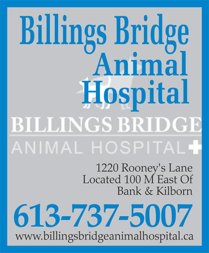Billings Bridge Animal Hospital (613-737-5007) - Annonce illustrée======= - 1220 Rooney's Lane Located 100 M East Of Bank & Kilborn 613-737-5007 www.billingsbridgeanimalhospital.ca 1220 Rooney's Lane Located 100 M East Of Bank & Kilborn 613-737-5007 www.billingsbridgeanimalhospital.ca