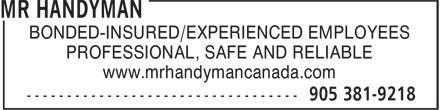 Mr Handyman of Hamilton (905-381-9218) - Annonce illustrée======= - BONDED-INSURED/EXPERIENCED EMPLOYEES PROFESSIONAL, SAFE AND RELIABLE www.mrhandymancanada.com