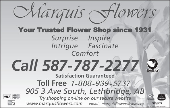 Marquis Flower Shop (403-327-1515) - Display Ad - Surprise Inspire Intrigue Fascinate Comfort Call 587-787-2277 Satisfaction Guaranteed Toll Free 1-888-939-5737 905 3 Ave South, Lethbridge, AB Try shopping on-line on our secure website www.marquisflowers.com