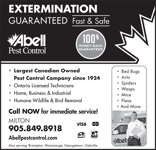 Abell Pest Control (905-849-8918) - Display Ad -