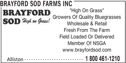 "Brayford Sod Farms Inc (705-435-7707) - Display Ad - BRAYFORD SOD FARMS INC ""High On Grass"" Growers Of Quality Bluegrasses Wholesale & Retail Fresh From The Farm Field Loaded Or Delivered Member Of NSGA www.brayfordsod.com -------------------------- 1 800 461-1210 Alliston"