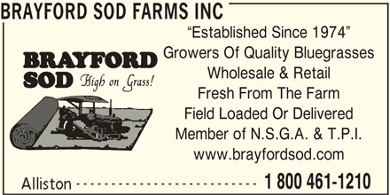 Brayford Sod Farms Inc (705-435-7707) - Display Ad - BRAYFORD SOD FARMS INC Established Since 1974 Growers Of Quality Bluegrasses Wholesale & Retail Fresh From The Farm Field Loaded Or Delivered Member of N.S.G.A. & T.P.I. www.brayfordsod.com -------------------------- 1 800 461-1210 BRAYFORD SOD FARMS INC Established Since 1974 Growers Of Quality Bluegrasses Wholesale & Retail Fresh From The Farm Field Loaded Or Delivered Member of N.S.G.A. & T.P.I. www.brayfordsod.com -------------------------- 1 800 461-1210