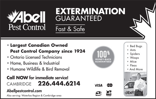 Abell Pest Control (519-743-8551) - Display Ad -