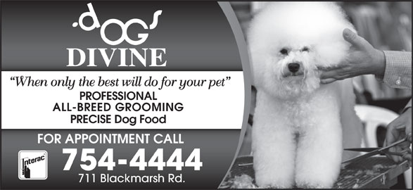 Dogs Divine (709-754-4444) - Display Ad - When only the best will do for your pet PROFESSIONAL ALL-BREED GROOMING PRECISE Dog Food FOR APPOINTMENT CALL 754-4444 711 Blackmarsh Rd.