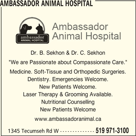 """Ambassador Animal Hospital (519-971-3100) - Display Ad - AMBASSADOR ANIMAL HOSPITAL Dr. B. Sekhon & Dr. C. Sekhon """"We are Passionate about Compassionate Care."""" Medicine. Soft-Tissue and Orthopedic Surgeries. Dentistry. Emergencies Welcome. New Patients Welcome. Laser Therapy & Grooming Available. Nutritional Counselling New Patients Welcome www.ambassadoranimal.ca 1345 Tecumseh Rd W -------------- 519 971-3100"""