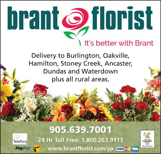 Brant Florist (905-639-7001) - Display Ad - Delivery to Burlington, Oakville, Hamilton, Stoney Creek, Ancaster, Dundas and Waterdown plus all rural areas. www.brantflorist.com/yp