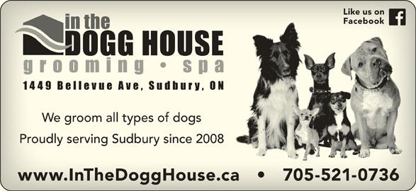 In The Dogg House Grooming Spa (705-521-0736) - Display Ad - Like us onLike us on FacebookFacebook We groom all types of dogsWe groom all types of dogs Proudly serving Sudbury since 2008Proudly serving Sudbury since 2008 www.InTheDoggHouse.ca       705-521-0736www.InTheDoggHouse.ca       705-521-0736