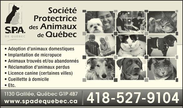 Société Protectrice des Animaux de Québec (418-527-9104) - Annonce illustrée======= - Adoption d'animaux domestiques Implantation de micropuce Animaux trouvés et/ou abandonnés Réclamation d'animaux perdus Licence canine (certaines villes) Cueillette à domicile Etc.  Etc. 1130 Galilée, Québec G1P 4B71130 Galilée, Québec G1P 4B7 418-527-9104418-527-9104 www.spadequebec.cawww.spadequebec.ca