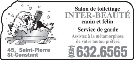 Salon de toilettage inter beaut canin et felin 45 rue for Salon de toilettage canin