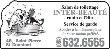 Salon de toilettage inter beaut canin et felin 45 rue for Salon de toilettage montreal