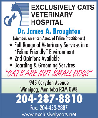 Exclusively Cats Veterinary Hospital (204-287-8810) - Annonce illustrée