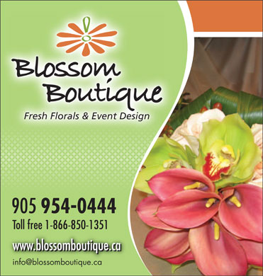 Blossom Boutique (905-954-0444) - Display Ad
