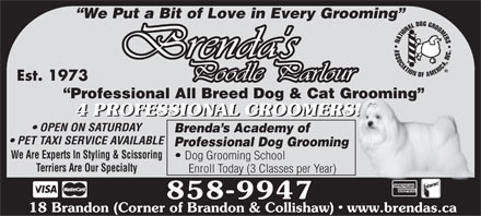 Brenda's Poodle Parlour (506-858-9947) - Annonce illustrée - We Put a Bit of Love in Every Grooming Est. 1973 Professional All Breed Dog & Cat Grooming 4 PROFESSIONAL GROOMERS! 4 PROFESSIONAL GROOMERS! OPEN ON SATURDAY Brenda s Academy of PET TAXI SERVICE AVAILABLE Professional Dog Grooming We Are Experts In Styling & Scissoring Dog Grooming School Terriers Are Our Specialty Enroll Today (3 Classes per Year) 858-9947 18 Brandon (Corner of Brandon & Collishaw)   www.brendas.ca We Put a Bit of Love in Every Grooming Est. 1973 Professional All Breed Dog & Cat Grooming 4 PROFESSIONAL GROOMERS! 4 PROFESSIONAL GROOMERS! OPEN ON SATURDAY Brenda s Academy of PET TAXI SERVICE AVAILABLE Professional Dog Grooming We Are Experts In Styling & Scissoring Dog Grooming School Terriers Are Our Specialty Enroll Today (3 Classes per Year) 858-9947 18 Brandon (Corner of Brandon & Collishaw)   www.brendas.ca