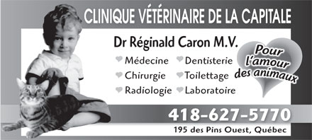 Clinique V&eacute;t&eacute;rinaire de la Capitale (418-627-5770) - Annonce illustr&eacute;e - CLINIQUE V&Eacute;T&Eacute;RINAIRE DE LA CAPITALE Dr R&eacute;ginald Caron M.V.V. DentisterieM&eacute;decine ToilettageChirurgie LaboratoireRadiologie 418-627-5770 195 des Pins Ouest, Qu&eacute;bec