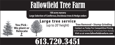 Fallowfield Tree Farm-Cut your own (613-720-3451) - Display Ad - 100 acres nursery Large Selection of Coniferous, Decideous trees & Hedge cedars Tree Removal   Stump Grinding You Pick - Contact us Today For Competitive Pricing We plant or 6100 Fallowfield Road, 10 minutes from Kanata Relocate Visit us at: www.fallowfieldtreefarm.com